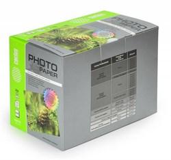 Фотобумага Cactus CS-MA6200500 10x15, 200г/м2, 500л., белый матовое для струйной печати - фото 4474