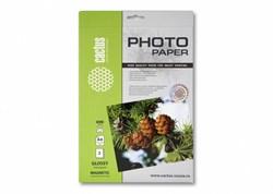 Магнитная фотобумага Cactus CS-MGA46902 A4, 690г/м2, 2л., глянцевая для струйной печати - фото 4564