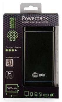 Мобильный аккумулятор Cactus CS-PBMS028-5000SG 5000mAh 2.1A графит - фото 4693