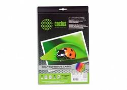 Этикетки Cactus С-30485254 A4 25.4x48.5мм 40шт на листе, 50л. - фото 6372