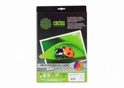 Этикетки Cactus С-30525212 A4 52.5x21.2мм 56шт на листе, 50л. - фото 6374