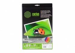 Этикетки Cactus С-30646338 A4 33.8x64.6мм 24шт на листе, 50л. - фото 6376