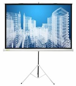 """Экран Cactus Triscreen CS-PST-104x186 84"""" 16:9 напольный белый (104x186 см.) - фото 8412"""