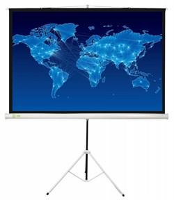 """Экран Cactus Triscreen CS-PST-150x150 84"""" 1:1 напольный белый (150x150 см.) - фото 8460"""