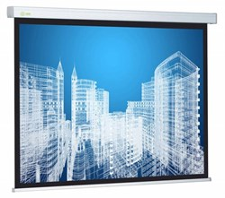 """Экран Cactus Wallscreen CS-PSW-183x244 124"""" 4:3 настенно-потолочный белый (183x244 см.) - фото 8492"""
