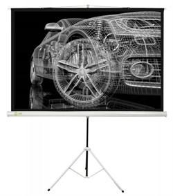 """Экран Cactus Triscreen CS-PST-124x221 103"""" 16:9 напольный белый (124x221 см.) - фото 8538"""
