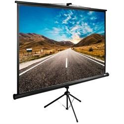 """Экран Cactus TriExpert CS-PSTE--BK 90"""" 1:1 напольный (160x160 см.) - фото 9171"""