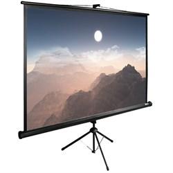"Экран Cactus TriExpert CS-PSTE-180x180-BK 100"" 1:1 напольный рулонный - фото 9173"