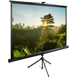 """Экран Cactus TriExpert CS-PSTE-200х200-BK 110"""" 1:1 напольный рулонный - фото 9175"""