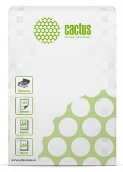 Бумага офисная Cactus CS-OP-A480250 A4, 80г/м2, 250 листов, белый CIE146% - фото 9287
