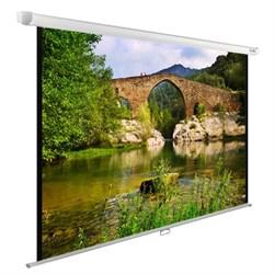 """Экран Cactus WallExpert CS-PSWE-220x165-WT 110"""" 4:3 настенно-потолочный (220x165 см.) - фото 9320"""