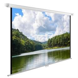 """Экран Cactus WallExpert CS-PSWE-240x150-WT 110"""" 16:10 настенно-потолочный (240x150 см.) - фото 9323"""