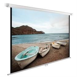 """Экран Cactus WallExpert CS-PSWE-220x138-WT 103"""" 16:10 настенно-потолочный (220x138 см.) - фото 9324"""