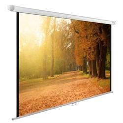 """Экран Cactus WallExpert CS-PSWE-200x125-WT 90"""" 16:10 настенно-потолочный (200x125 см.) - фото 9340"""