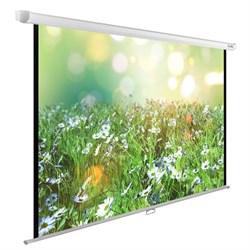 """Экран Cactus WallExpert CS-PSWE-200x200-WT 110"""" 1:1 настенно-потолочный рулонный - фото 9346"""