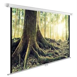 """Экран Cactus WallExpert CS-PSWE-220x220-WT 120"""" 1:1 настенно-потолочный (220x220 см.) - фото 9348"""