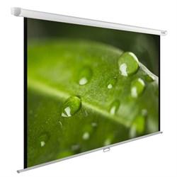 """Экран Cactus WallExpert CS-PSWE-200x150-WT 100"""" 4:3 настенно-потолочный (200x150 см.) - фото 9350"""
