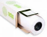 Фотообои Cactus CS-WP2501-1X30 1000мм-30.5м, 200г/м2 матовое гладкая для УФ, латексной печати