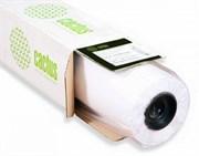 Фотообои Cactus CS-WP2521-1X30 1000мм-30.5м, 300г/м2 матовое шероховатая для сольвентной, латексной, УФ печати