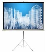 """Экран Cactus Triscreen CS-PST-104x186 84"""" 16:9 напольный белый (104x186 см.)"""