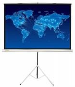 """Экран Cactus Triscreen CS-PST-150x150 84"""" 1:1 напольный рулонный белый"""