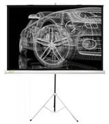 """Экран Cactus Triscreen CS-PST-124x221 100"""" 16:9 напольный белый (124x221 см.)"""