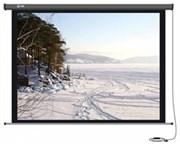 Экран Cactus 206x274см Professional Motoscreen CS-PSPM-206x274 4:3 настенно-потолочный рулонный (моторизованный привод).