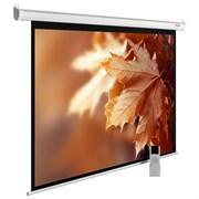 """Экран Cactus MotoExpert CS-PSME-300X188-WT 141"""" 16:10 настенно-потолочный белый, моторизованный привод (300x188 см.)"""