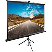 "Экран Cactus TriExpert CS-PSTE-160x160-BK 90"" 1:1 напольный рулонный"