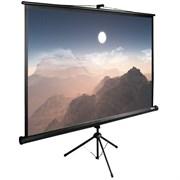 """Экран Cactus TriExpert CS-PSTE-180x180-BK 100"""" 1:1 напольный (180x180 см.)"""
