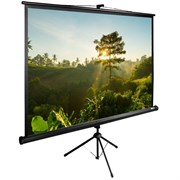 """Экран Cactus TriExpert CS-PSTE-200х200-BK 110"""" 1:1 напольный (200х200 см.)"""