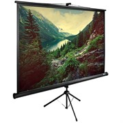 """Экран Cactus TriExpert CS-PSTE-220х220-BK 120"""" 1:1 напольный рулонный"""
