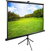 """Экран Cactus TriExpert CS-PSTE-200х150-BK 100"""" 4:3 напольный рулонный"""