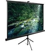 """Экран Cactus TriExpert CS-PSTE-220х165-BK 110"""" 4:3 напольный рулонный"""