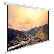"""Экран Cactus WallExpert CS-PSWE-240x180-WT 120"""" 4:3 настенно-потолочный (240x180 см.)"""