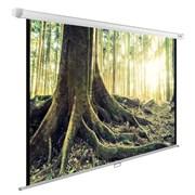 """Экран Cactus WallExpert CS-PSWE-220x220-WT 120"""" 1:1 настенно-потолочный (220x220 см.)"""